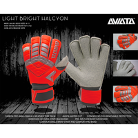 Aviata Light Bright Halcyon V5 Goalkeeper Glove Information