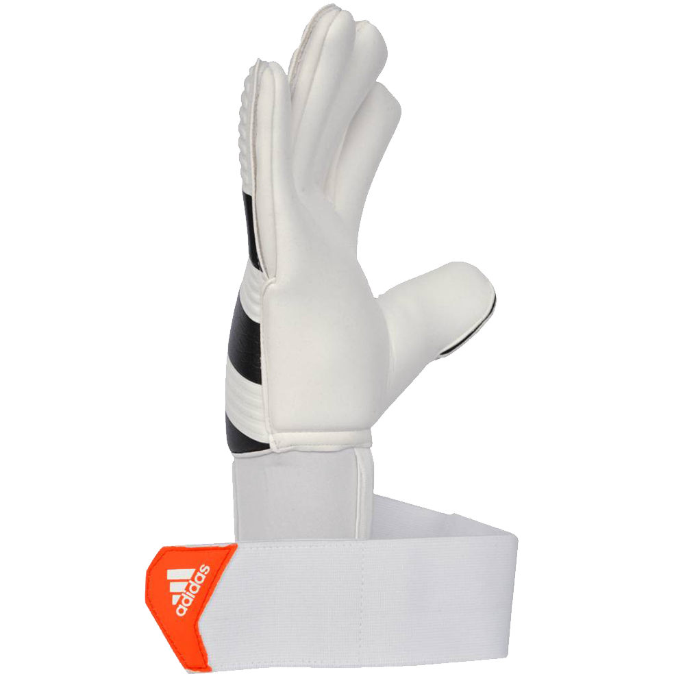 Adidas Ace goalkeeper glove