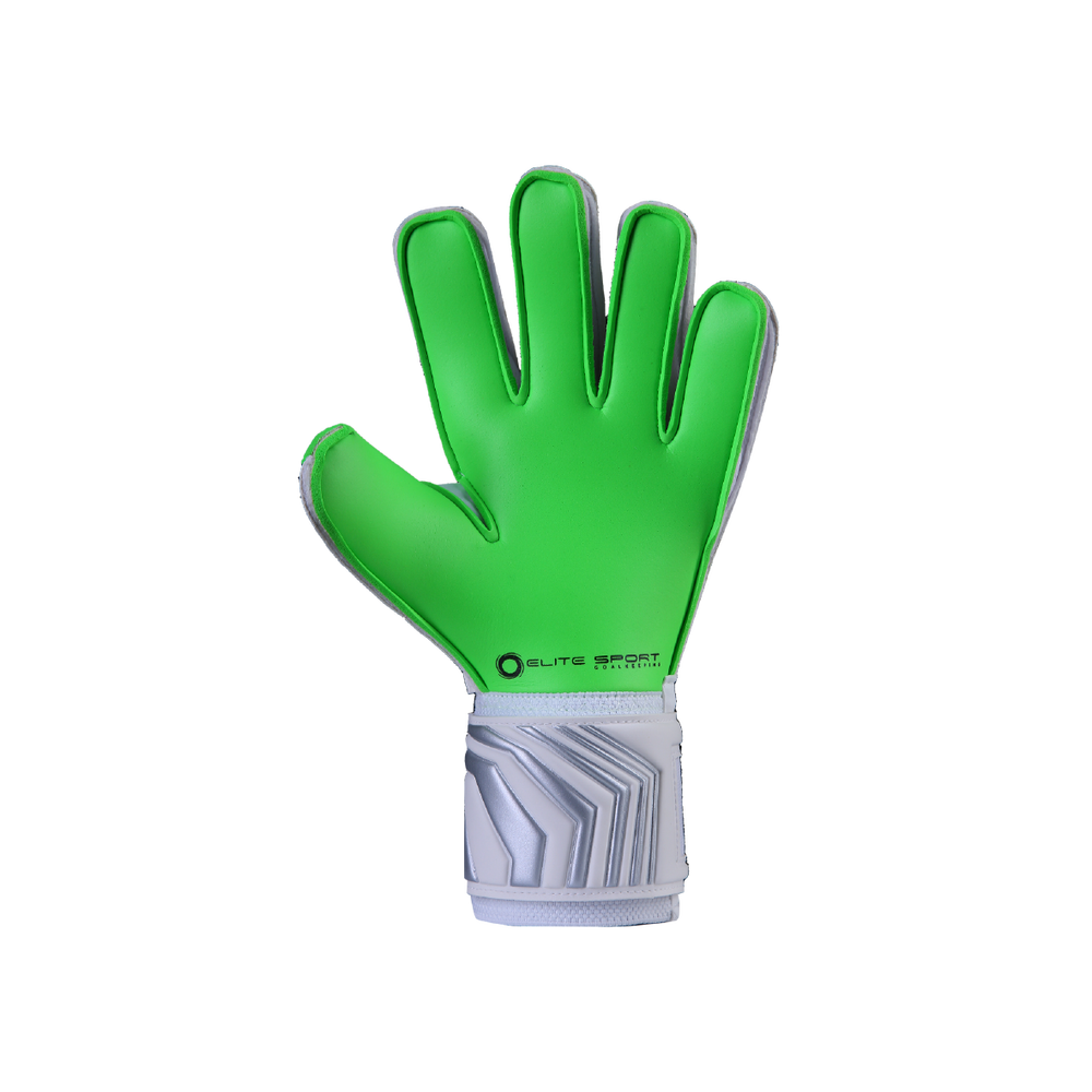Palm of the Elite Sport Andalucia