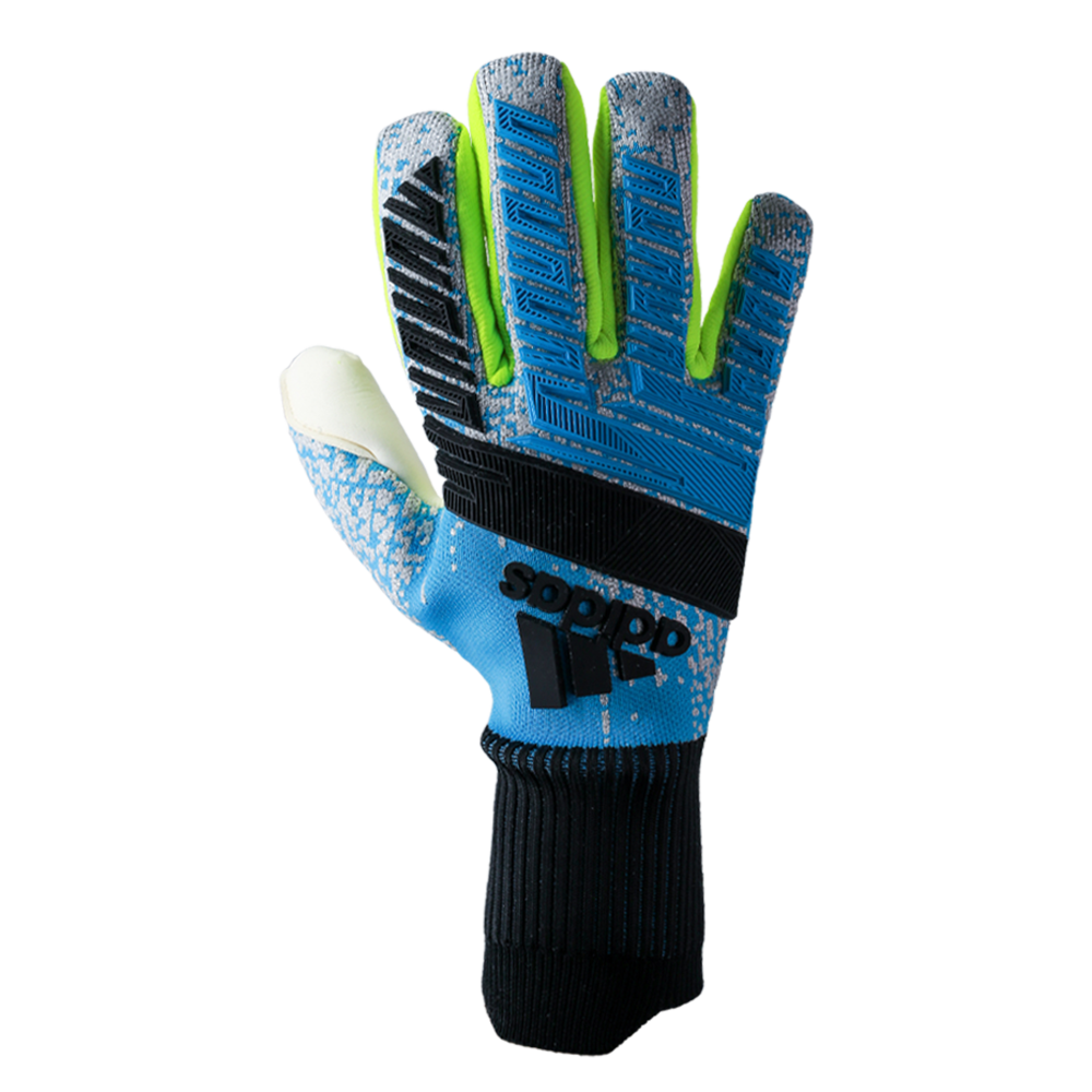 Goalkeeper Glove Backhand