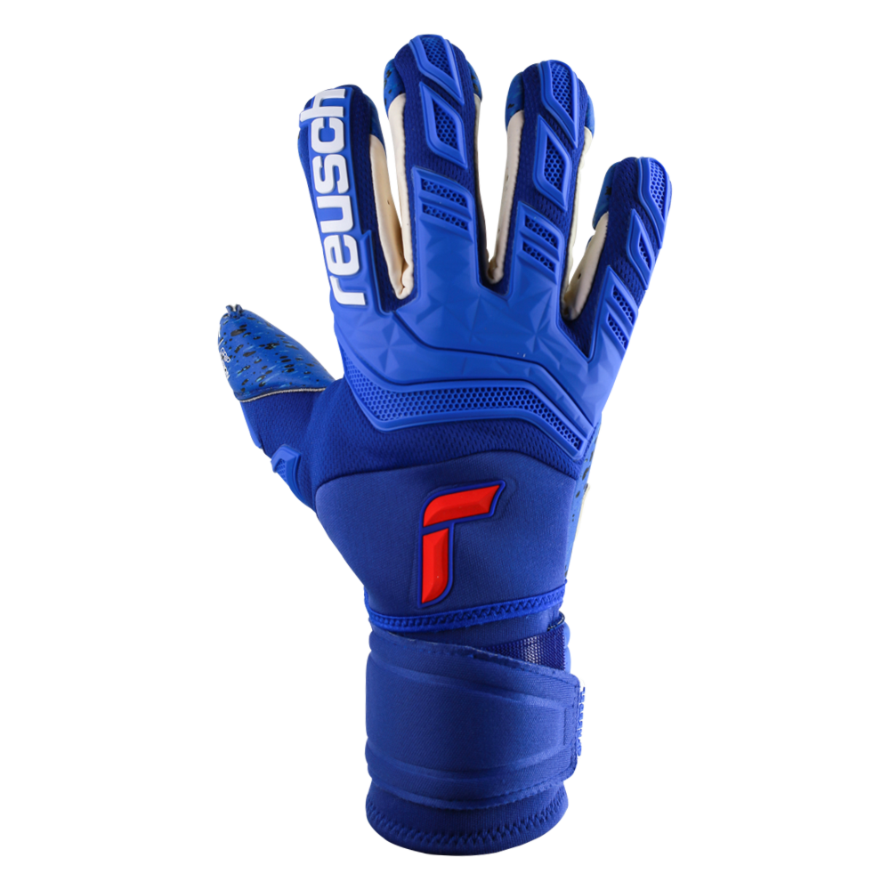 Reusch Attrakt Freegel Fusion Ortho-Tec Goaliator Backhand